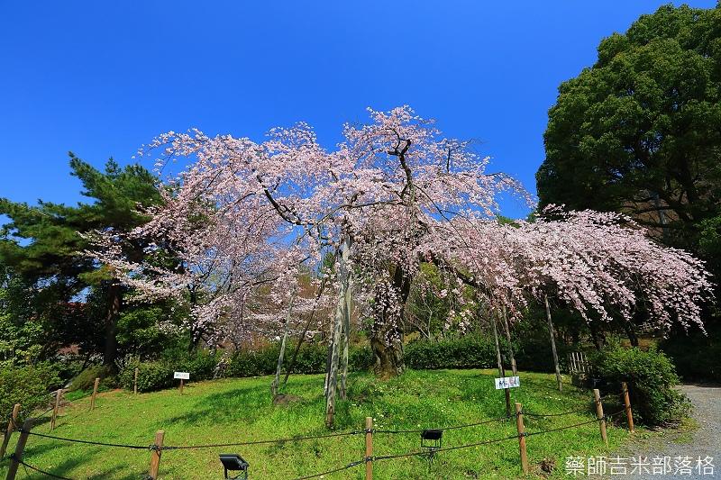 Kyoto_150330_0450.jpg
