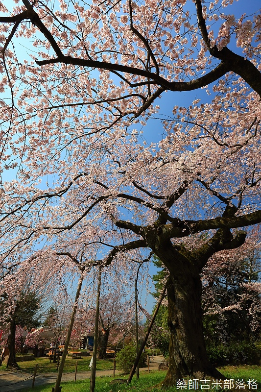 Kyoto_150330_0493.jpg