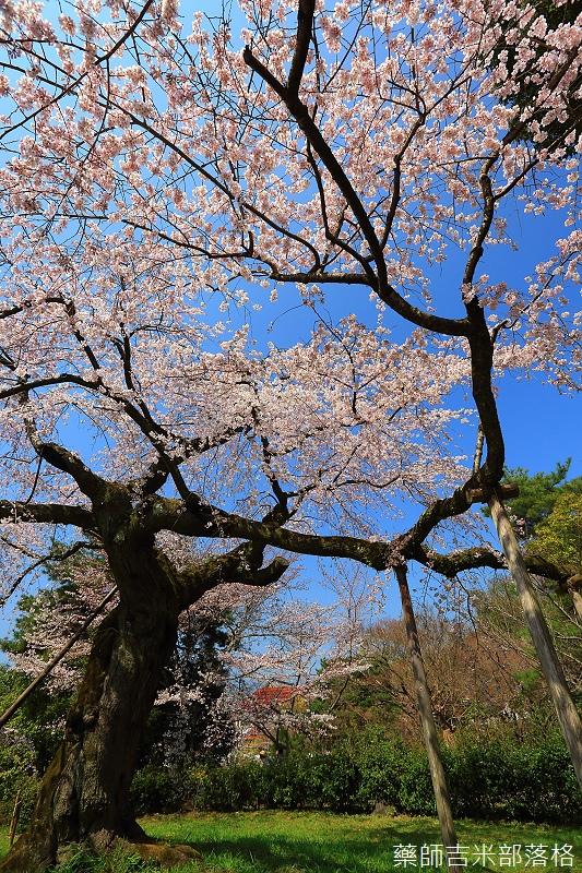 Kyoto_150330_0511.jpg