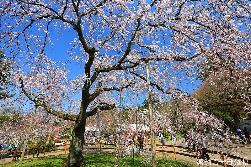 Kyoto_150330_0552.jpg