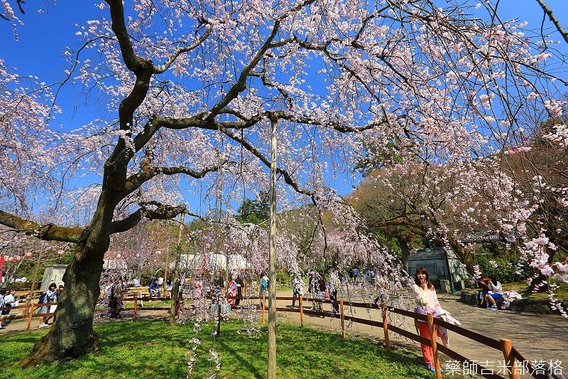 Kyoto_150330_0564.jpg