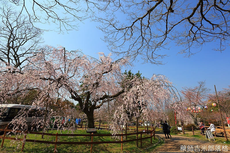 Kyoto_150330_0649.jpg