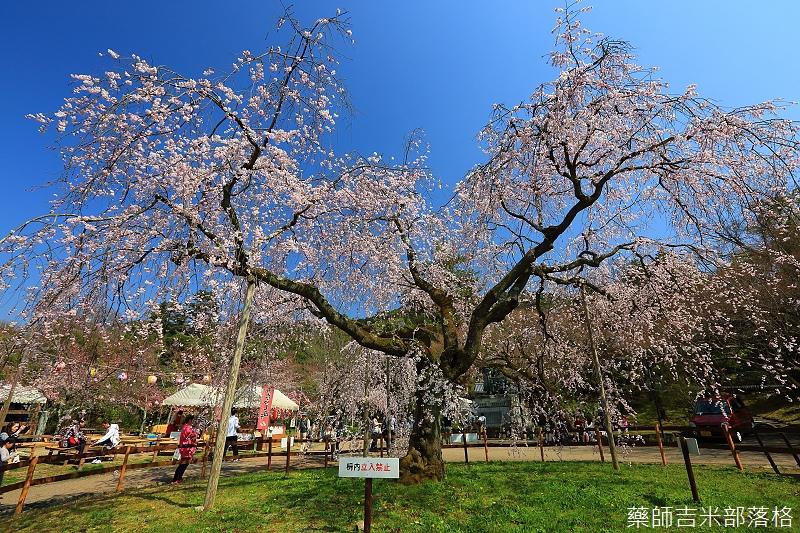 Kyoto_150330_0665.jpg