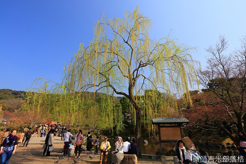 Kyoto_150330_0748.jpg