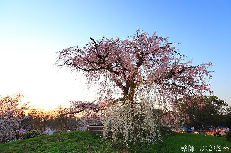 Kyoto_150330_1195.jpg