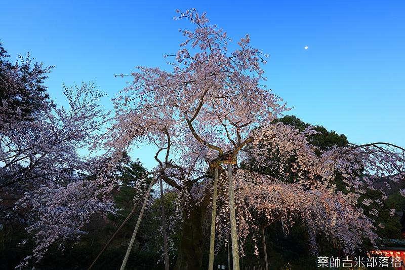 Kyoto_150330_1207.jpg