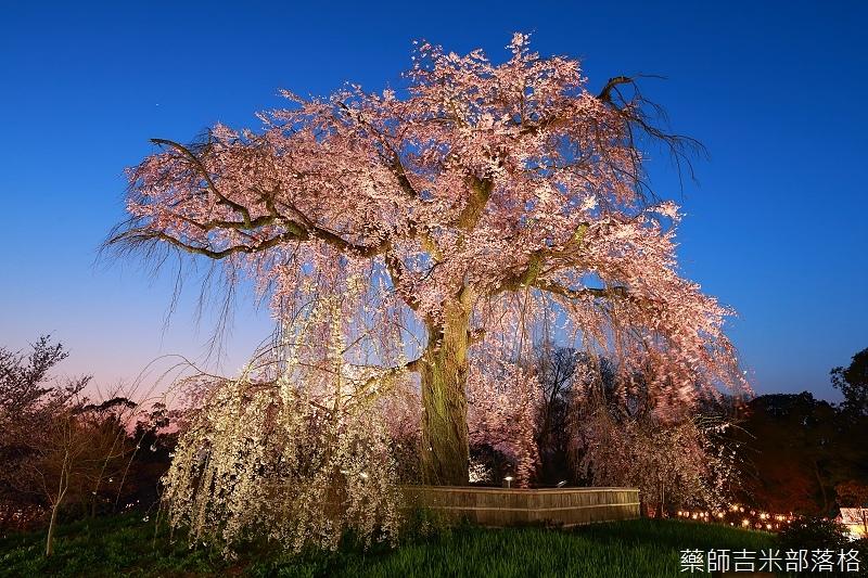 Kyoto_150330_1235.jpg