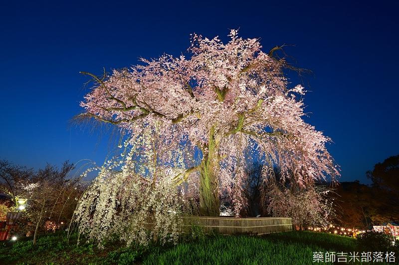 Kyoto_150330_1265.jpg