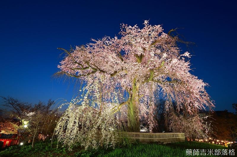 Kyoto_150330_1269.jpg