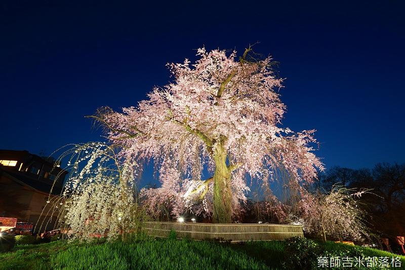 Kyoto_150330_1289.jpg