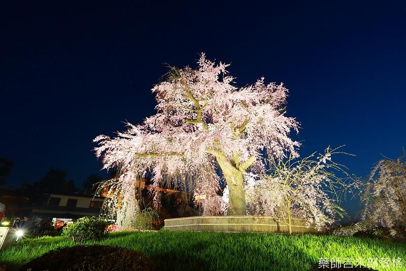 Kyoto_150330_1304.jpg