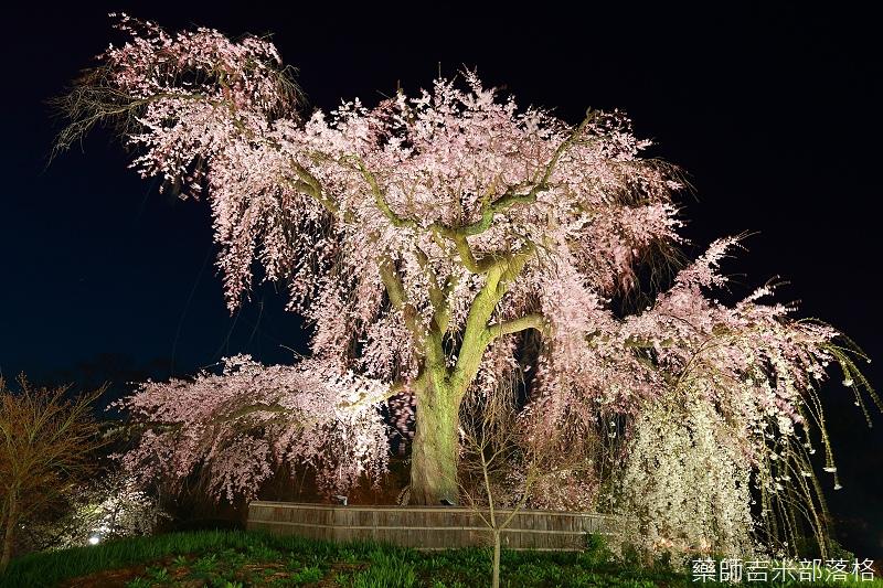 Kyoto_150330_1316.jpg