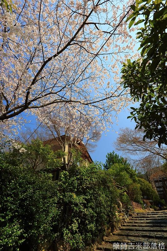 Kyoto_150330_0203.jpg