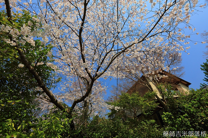 Kyoto_150330_0206.jpg