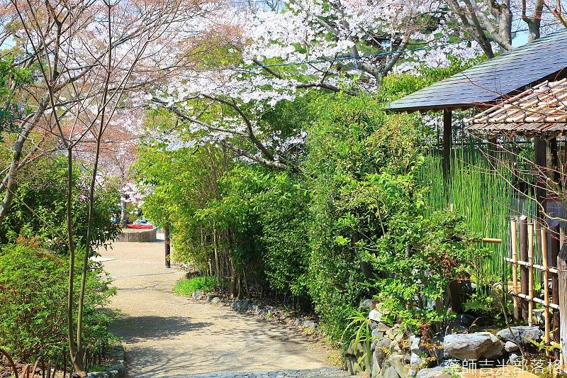 Kyoto_150330_0220.jpg