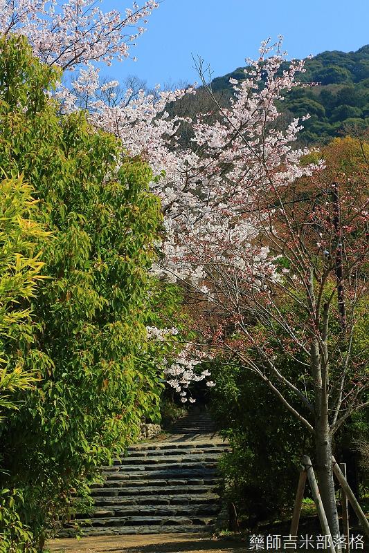 Kyoto_150330_0234.jpg