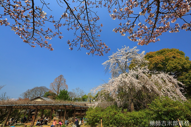 Kyoto_150330_0255.jpg