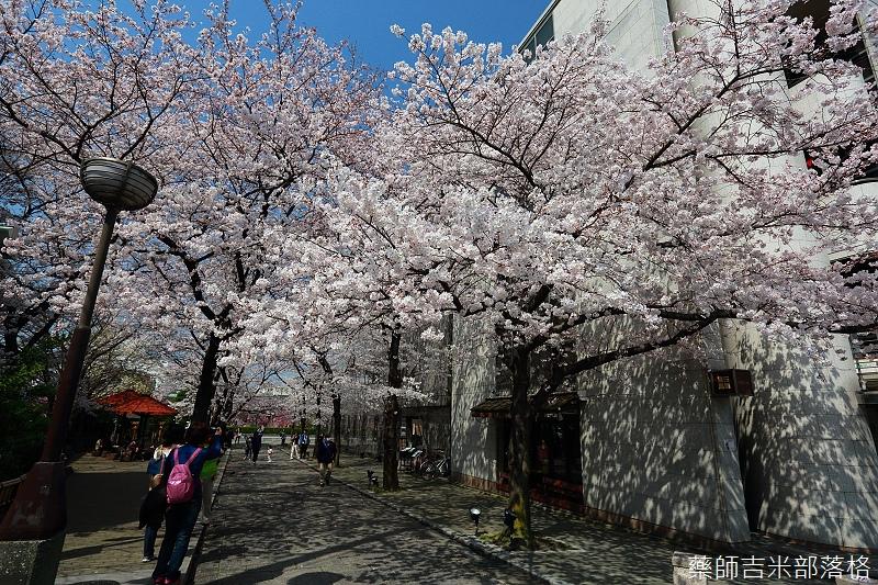 Kyoto_150331_0007.jpg