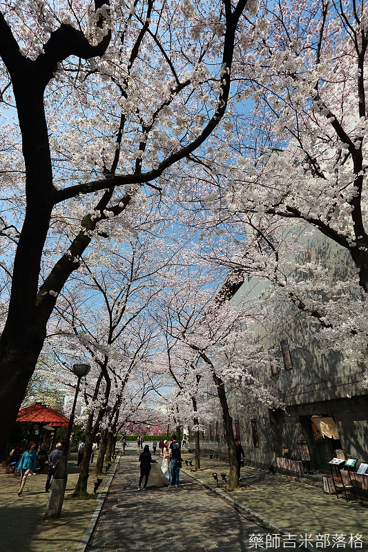 Kyoto_150331_0040.jpg