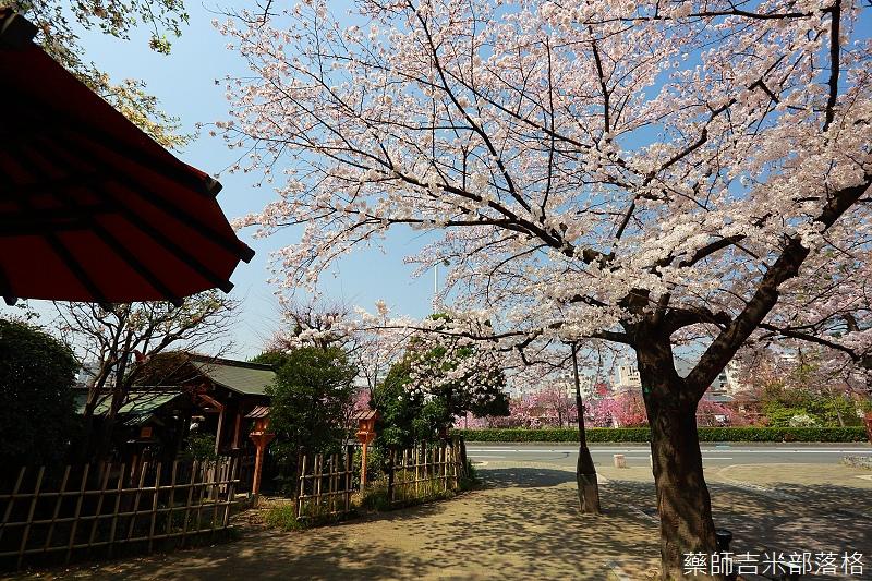 Kyoto_150331_0064.jpg