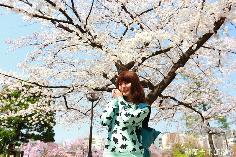 Kyoto_150331_0082.jpg