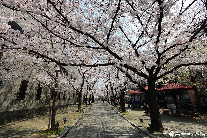 Kyoto_150331_0103.jpg