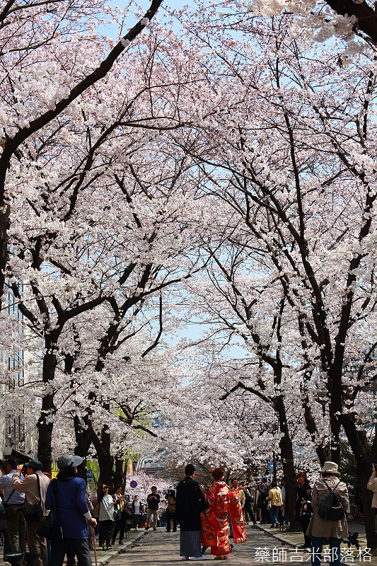 Kyoto_150331_0168.jpg