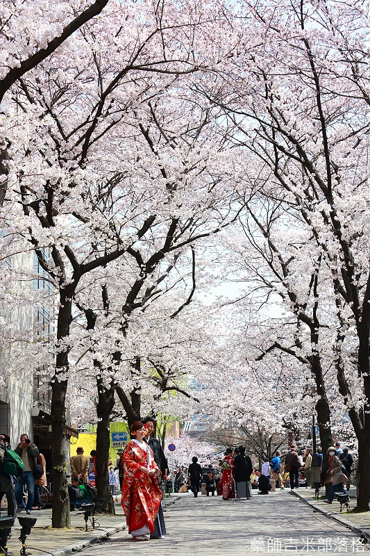 Kyoto_150331_0201.jpg