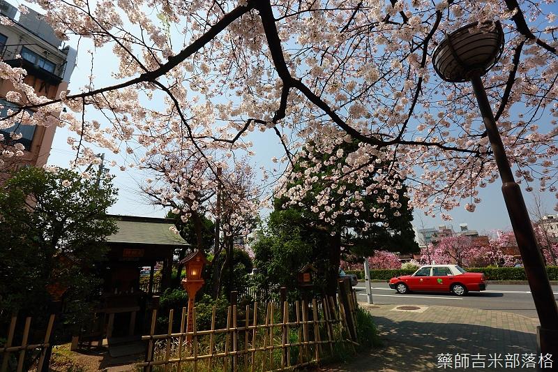Kyoto_150331_0225.jpg