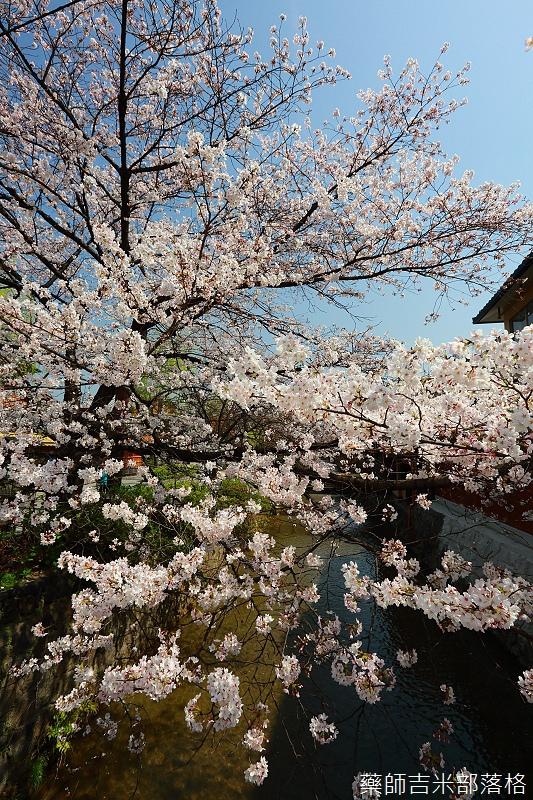 Kyoto_150331_0258.jpg