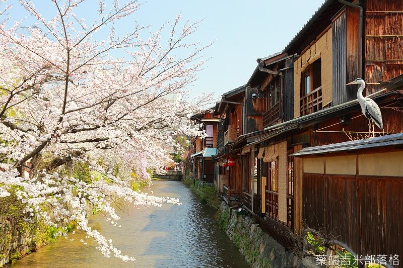 Kyoto_150331_0441.jpg