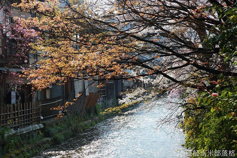 Kyoto_150331_0575.jpg