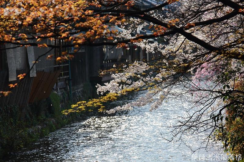 Kyoto_150331_0586.jpg