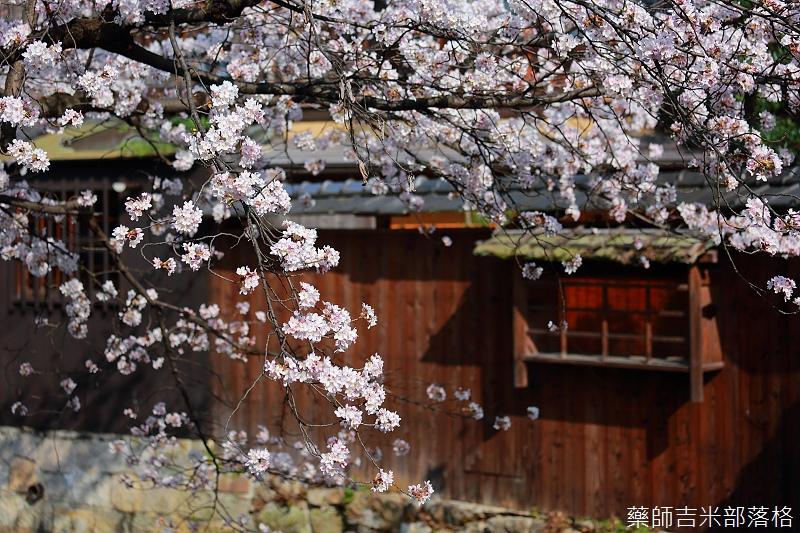 Kyoto_150331_0662.jpg