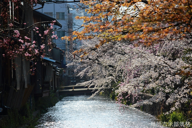 Kyoto_150331_0665.jpg