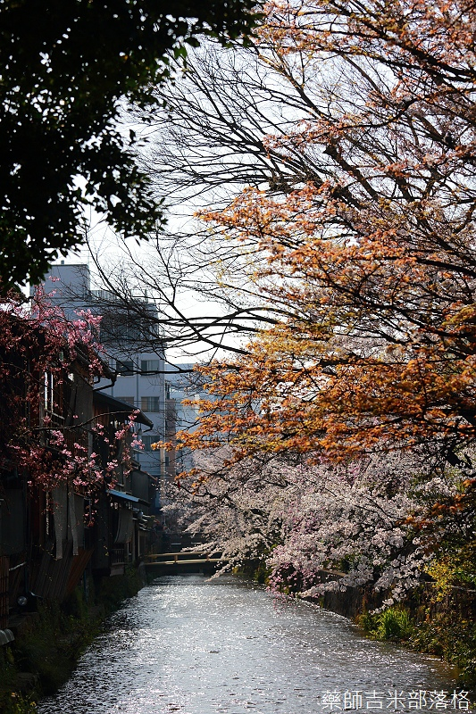 Kyoto_150331_0709.jpg