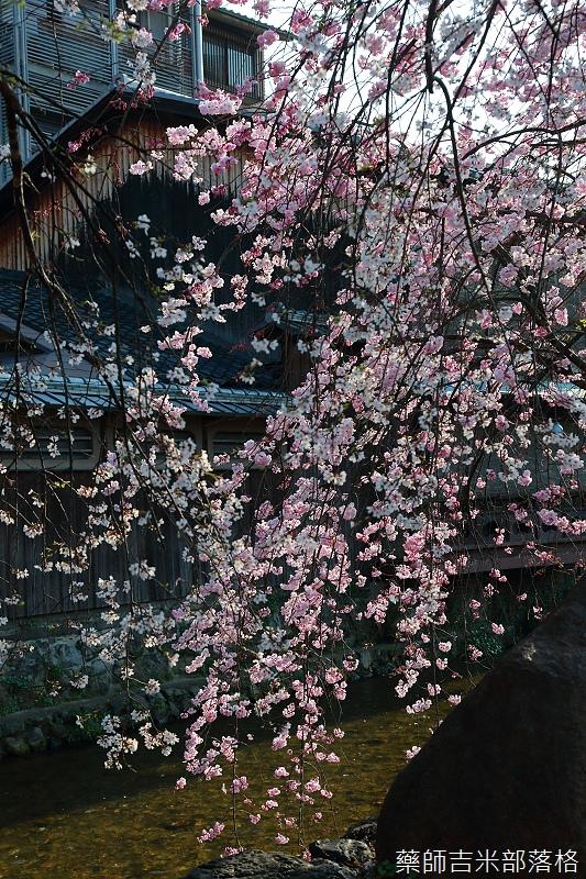 Kyoto_150331_0790.jpg