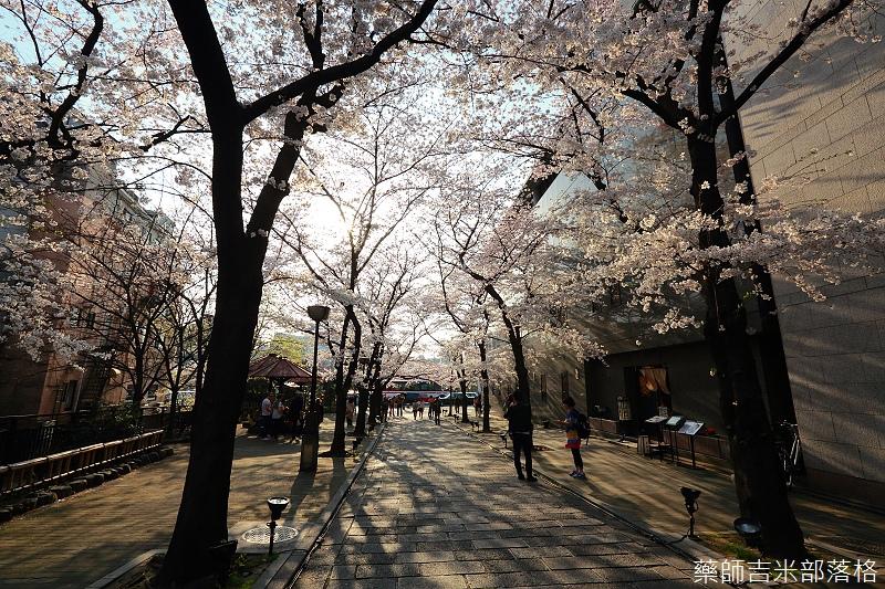 Kyoto_150331_0937.jpg