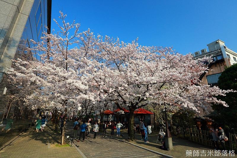 Kyoto_150331_0947.jpg