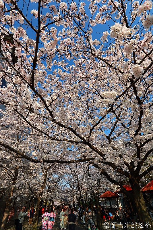 Kyoto_150331_0973.jpg