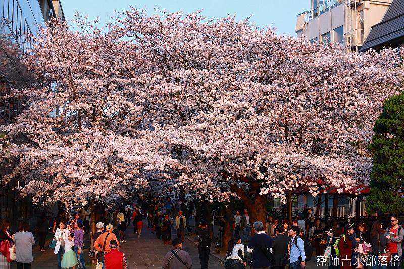 Kyoto_150331_1202.jpg