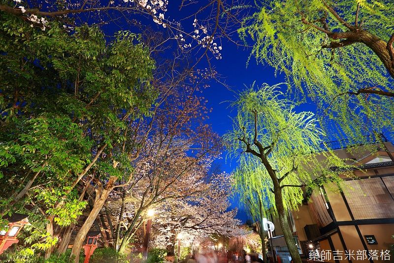 Kyoto_150331_1343.jpg