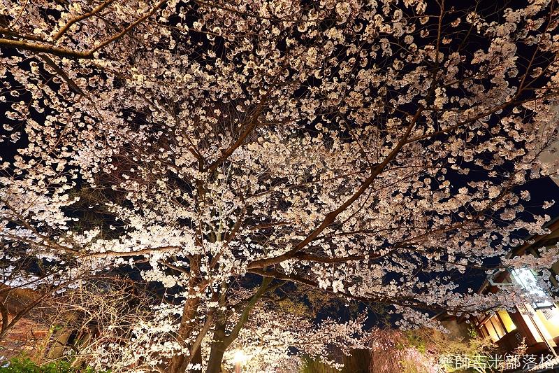 Kyoto_150331_1391.jpg