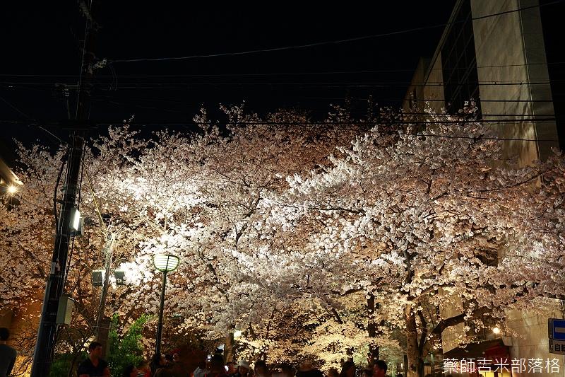Kyoto_150331_1403.jpg