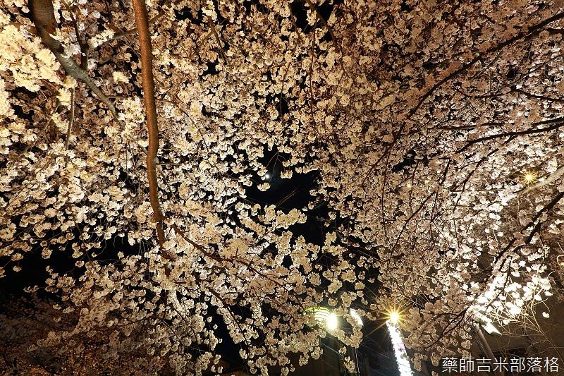 Kyoto_150331_1417.jpg