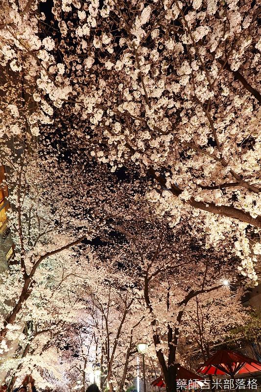 Kyoto_150331_1419.jpg