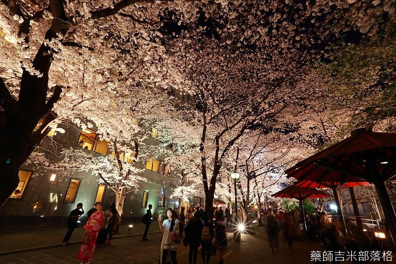 Kyoto_150331_1443.jpg