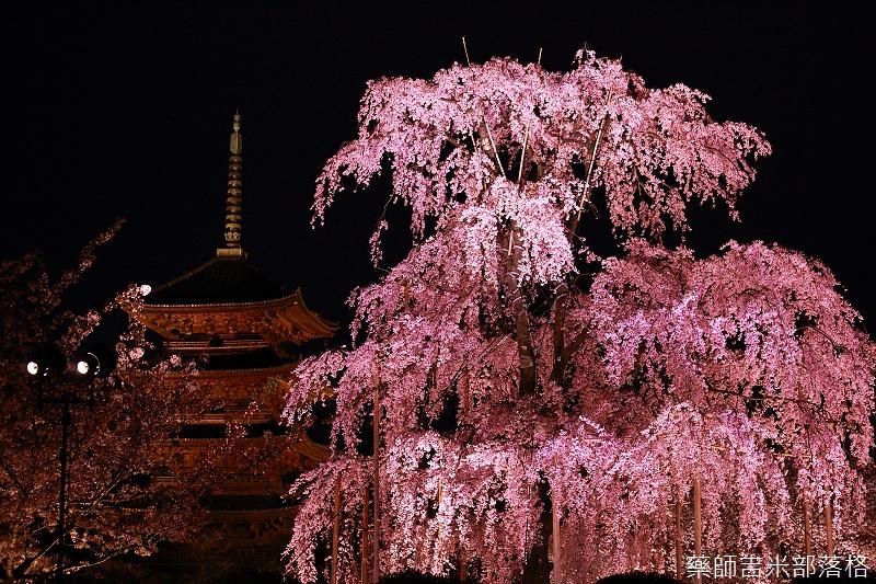 Kyoto_150402_1711.jpg