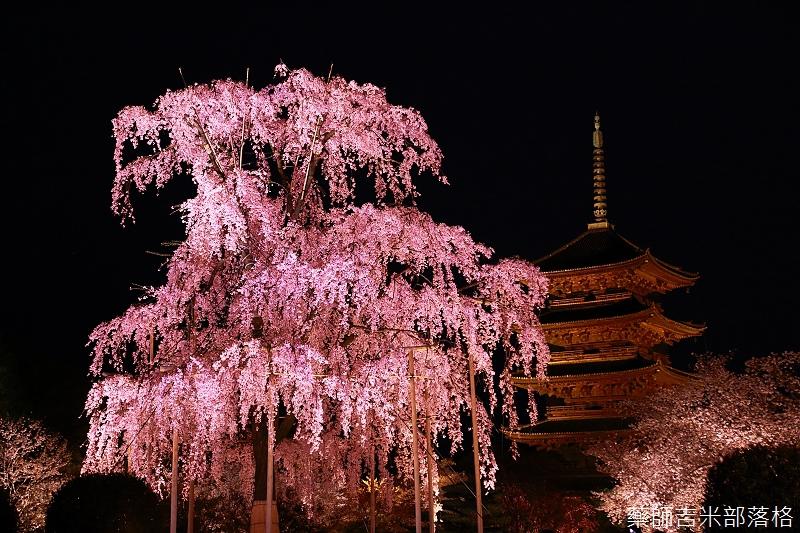 Kyoto_150402_1722.jpg