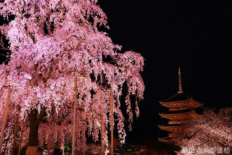 Kyoto_150402_1727.jpg